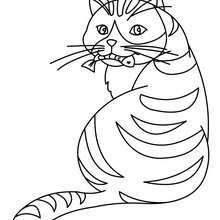 Katze isst einen Fisch zum Ausmalen