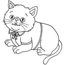 Elegante Katze zum Ausmalen