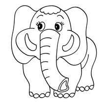 Elefant zum Ausmalen