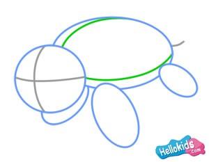 Wie man eine Meeresschildkröte malt