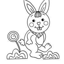 Lustiges Kaninchen zum Ausmalen