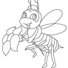 Biene zum online Ausmalen