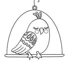 Kawaii Vogel zum Ausmalen