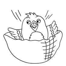 Kanarienvogel zum Ausmalen