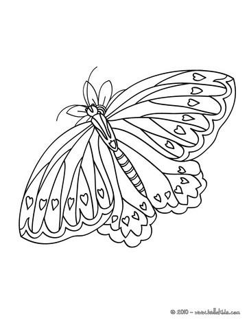 Schmetterling Zum Ausmalen Ausmalbilder Ausmalbilder Ausdrucken