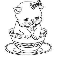 Kätzchen in einer Tasse zum Ausmalen