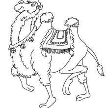 Kamel zum Ausmalen