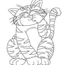Große dicke Katze zum Ausmalen