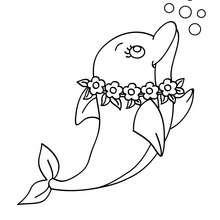 Entzückender Delphin zum Ausmalen