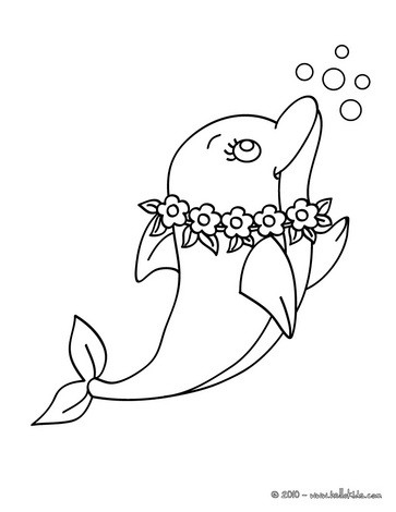 Delphin Zum Ausdrucken Zum Ausmalen De Hellokids Com