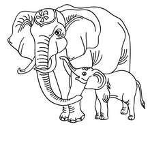 Elefant zum online Ausmalen