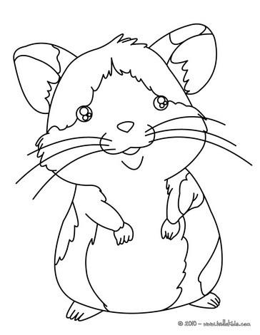 Hamster zum ausmalen zum ausmalen - de.hellokids.com