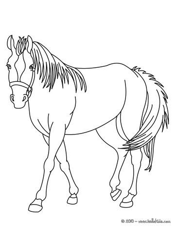Entspannendes pferd zum online ausmalen zum ausmalen dehellokids pferd bild zum ausmalen thecheapjerseys Images