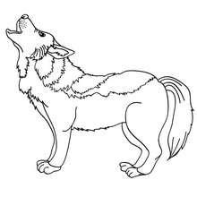 Wolf zum online Ausmalen