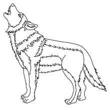 Wolf zum Ausmalen