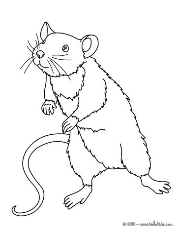 Maus zum Ausmalen