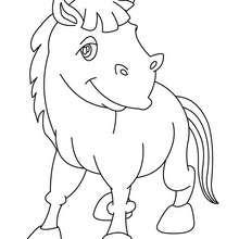 Kawaii Esel zum Ausmalen