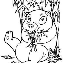 Lustiger Panda zum Ausmalen