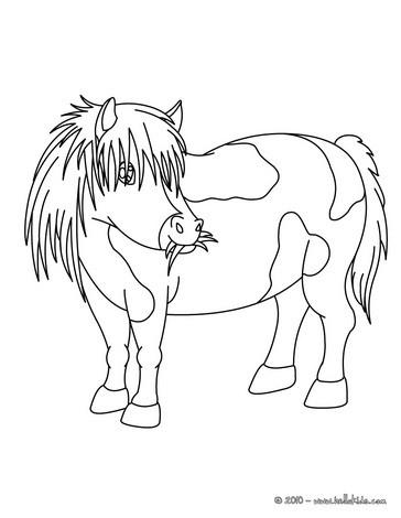 ausmalbilder pony | image gallery