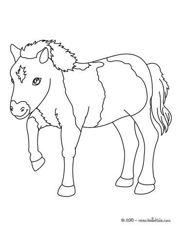 Pony Zum Ausmalen Ausmalbilder Ausmalbilder Ausdrucken De
