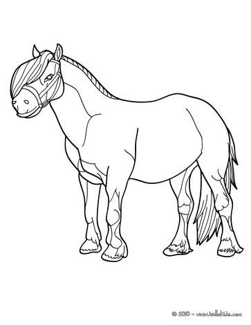 Pony bild zum ausmalen zum ausmalen - Coloriage poney club ...