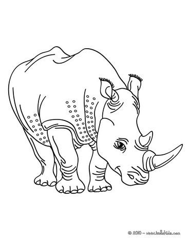 Nashorn Zum Online Ausmalen Zum Ausmalen Dehellokidscom