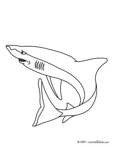 Hai : Ausmalbilder, Bilder für Kinder, Kostenlose Spiele, Videos für ...