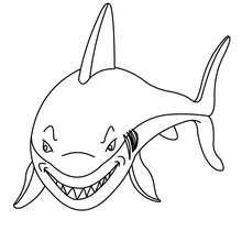 Grinsender Hai zum Ausmalen