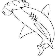Hammerhai zum online Ausmalen