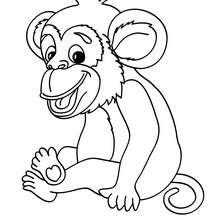 Affe Bild zum Ausmalen
