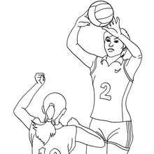 Volleyball Pass zum Ausmalen
