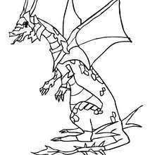 Drachenkrieger zum Ausmalen