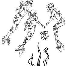 Gruppe entzückender schwimmender Meerjungfrauen zum Ausmalen