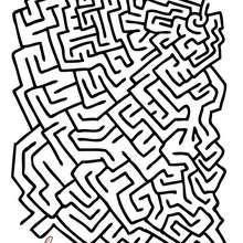 FINDE MEIN HAUSTIER leichtes Labyrinth zum Ausdrucken