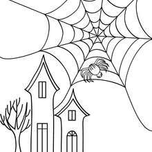 Halloween Spinnennetz zum Ausmalen