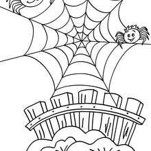 Lustiges Spinnennetz zum Ausmalen