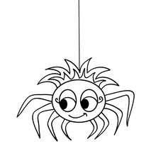 Schöne Spinne zum Ausmalen