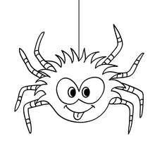 Lustige Spinne zum Ausmalen