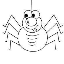Liebe Spinne zum Ausmalen