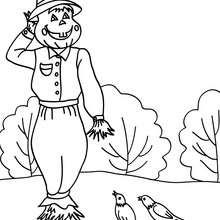 Vogelscheuche mit Vögeln zum Ausmalen