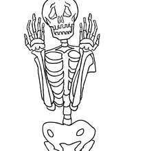 Gruseliges Skelett von vorne zum Ausmalen