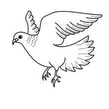 Liebesvogel zum Ausmalen