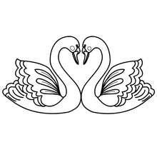 Liebesschwan zum Ausmalen