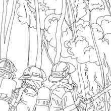 Feuerwehrmänner löschen einen brennenden Baum zum Ausmalen