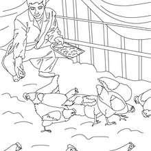 Bauer füttert seine Hennen zum Ausmalen