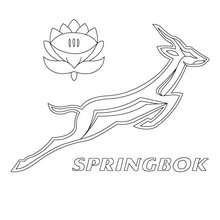 Südafrika Spring Box Mannschaft zum Ausmalen