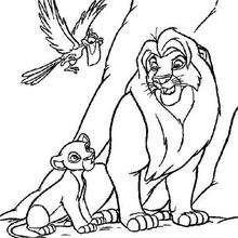 Mufasa, Simba und Zazu