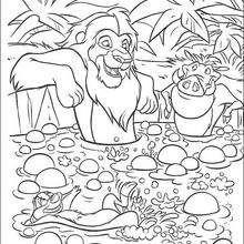 Simba, Timon und Pumbaa baden