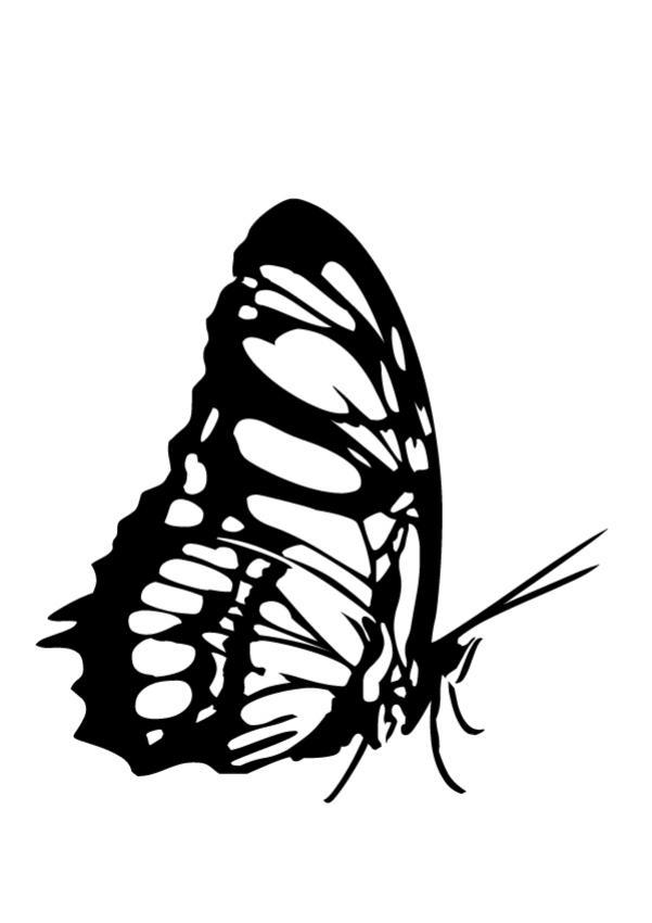 Gemütlich Einfache Monarchfalter Malvorlagen Zeitgenössisch ...