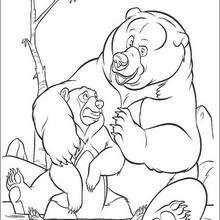 Bärenbrüder 24